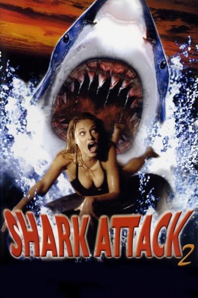Affiche Film Shark Attack 2