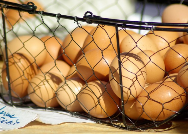 Des œufs dans un panier métallique