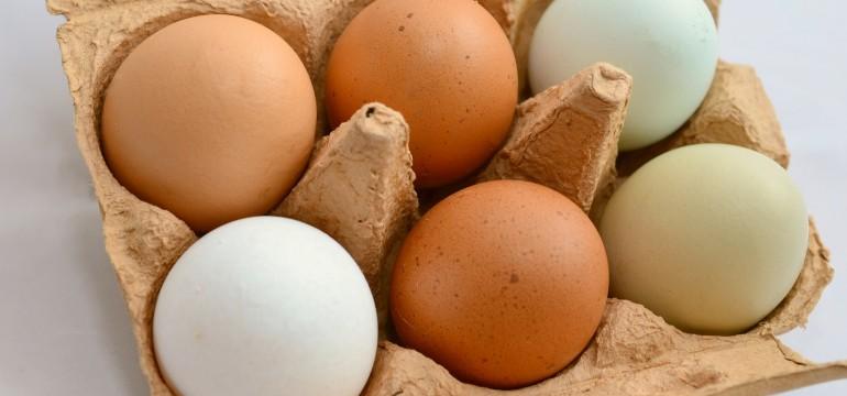 Une barquette d'œufs de différentes couleurs