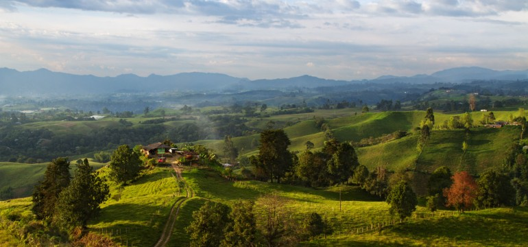 Colombian Landscape - Pedro Szekely - Playlist