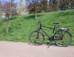 Mon vélo tout neuf